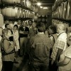 Mendoza Winery - Enotuurism in Alicante
